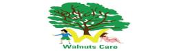 Walnuts Care Ltd