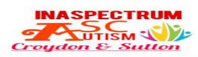 Inaspectrum Adult Autism
