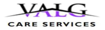 VALG Care Services