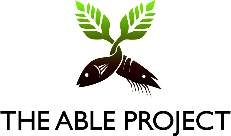 The ABLE Project